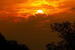 Sunset in Yala , Sri Lanka