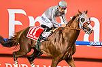 DUBAI, UNITED ARAB EMIRATES-MARCH 26: California Chrome, ridden by Victor Espinoza, wins the Dubai World Cup at Meydan Racecourse on March 26, 2016 in Dubai, United Arab Emirates (Photo by Kaz Ishida/Eclipse Sportswire/Getty Images)