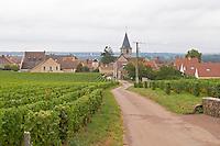 Vineyard. Romanee Saint Vivant to the left, La Grande Rue, right, Grands Crus. Vosne Romanee village. Vosne Romanee, Cote de Nuits, d'Or, Burgundy, France