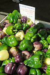 Williamsport Growers Market..Yellow, purple, green peppers