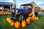 Pumpkins for sale at a Barre, MA farm stand