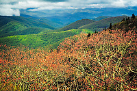Spring colors and clouds, Blue Ridge Parkway