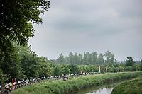 peloton <br /> <br /> 17th Dwars Door Het Hageland 2021<br /> One Day Race: Aarschot – Diest 18Okm (UCI 1.Pro)<br /> Bingoal Cycling Cup 2021<br /> <br /> ©kramon