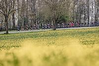 colourful passage<br /> <br /> 61st Brabantse Pijl 2021 (1.Pro)<br /> 1 day race from Leuven to Overijse (BEL/202km)<br /> <br /> ©kramon