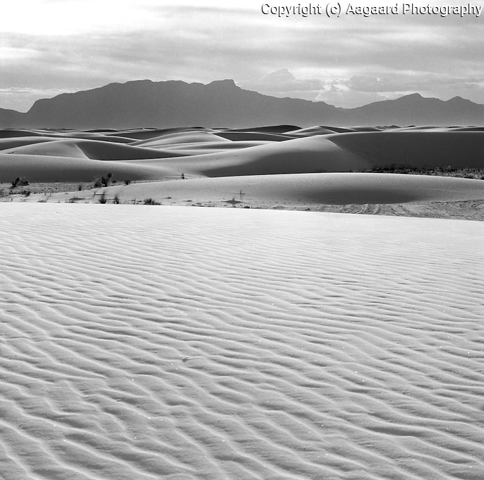 White Sands in evening light.<br /> <br /> Hassleblad 500C/M, 50mm lens, Ilford XP2 film, red filter