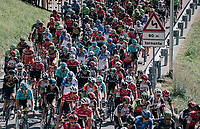 peloton up the first climb of the day: the Colle Gallo (763m)<br /> <br /> Il Lombardia 2017<br /> Bergamo to Como (ITA) 247km