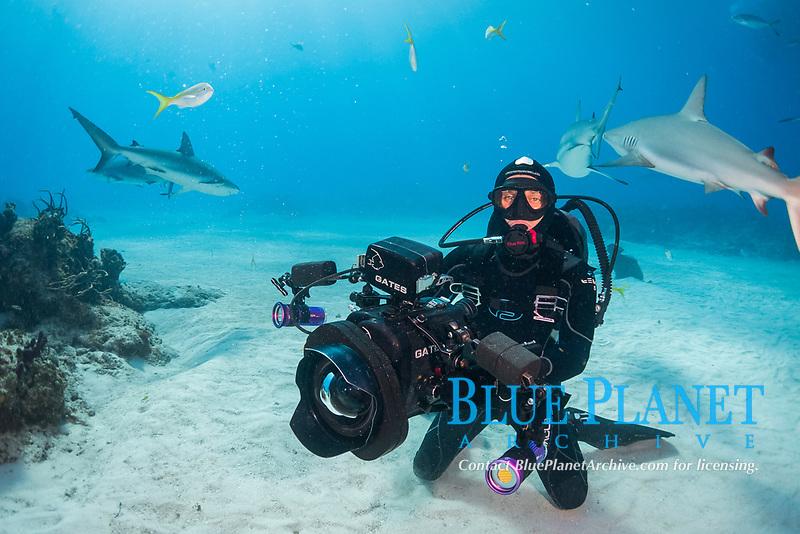 underwater videographer, shooting sharks, Bahamas, Caribbean Sea, Atlantic Ocean