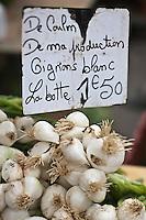 Europe/France/Poitou-Charentes/79/Deux-Sèvres/Niort: Oignon blanc nouveau de Coulon sur un étal du  marché