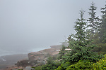 View of the Atlantic Ocean from the Shore Path in Acadia National Park, Maine, USA