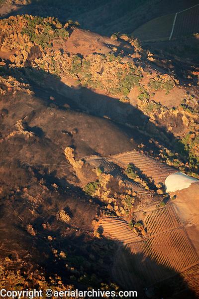 Mountain vineyards survive the Nuns Fire in the Mayacama Mountains, Sonoma County, California, northern California wildfires, 2017