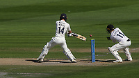 Robbie White in batting action for Middlesex during Sussex CCC vs Middlesex CCC, LV Insurance County Championship Division 3 Cricket at The 1st Central County Ground on 7th September 2021