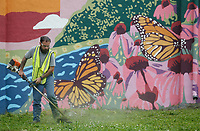 Tyler Bagley works in front of a mural with a crew Monday, June 7, 2021, to trim a piece of property off of Emma Avenue near the Springdale Municipal Airport. The mural, titled Chasing Arkansas Summer by Roxy Erickson, was painted this year. Check out nwaonline.com/210608Daily/ and nwadg.com/photos for a photo gallery.<br /> (NWA Democrat-Gazette/David Gottschalk)
