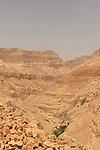 Israel, Judean desert. A view of Nahal Arugot from Mount Zeruya
