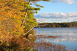 Fall scenic. Kezar Lake, Sutton, NH