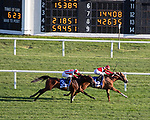 August 14, 2021 : Two Emmys, #4, ridden by jockey James Graham wins the Mr D. Stakes on Mister D Stakes Day at Arlington Park Racecourse on August 14, 2021 in Arlington Heights, Illinois. Ryan Thompson/Eclipse Sportswire/CSM
