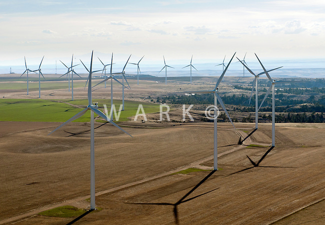 Wind Farm, north of Limon, Colorado.  2012