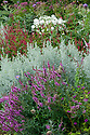 Mixed border, Parham House, mid August.