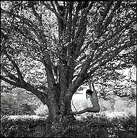Nude figure hanging from large tree