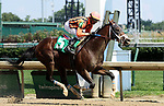 June 29, 2019 : Line Judge (#5, Corey Lanerie) wins the Kelly's Landing Stakes at Churchill Downs, Louisville, Kentucky. Trainer Peter Miller, Owner Tom Kagele. By Spring at Last x Reigning Dynasty (Thunder Gulch). Mary M. Meek/ESW/CSM