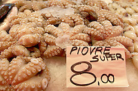 Fresh Sea Food & Fish - Octopus - Chioggia - Venice Italy