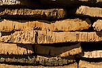 Cork lying outside the Cork factory in San Bras de Alportel in the Algarve region of Portugal.