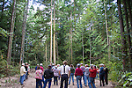 Jefferson Land Trust, Bulis Forest Preserve, Land Steward Erik Kingfisher explains planned forest thinning to Trust members, Port Townsend, Olympic Peninsula, Jefferson County, Washington State, Pacific Northwest, United States, land preservation,