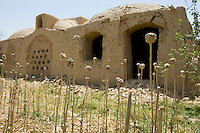 The village of Granai in the Taleban controlled district of Bala Balouk in Farah province Afghanistan was bombed by nato forces of May 4th 2009. Over 140 civilians died in the bombing. The worst single loss of life since the war began in 2001. The remains of the opium harvest on the edge of the village.