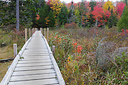Zealand Trail in Bethlehem, New Hampshire USA during the autumn months.