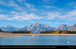 Colter Bay, Jackson Lake, Grand Tetons, Cathedral Group, Mount Moran, Bivouac Peak, Grand Teton National Park, Wyoming