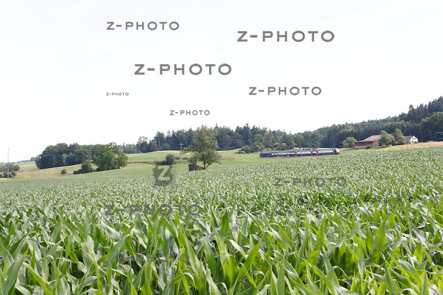 Ein DPZ Plus (Doppelstockpendelzug) faehrt ueber die Thurbruecke in Ossingen im Kanton Zuerich fotografiert am 28. Juni 2012 .Foto: Zvonimir Pisonic, Visueller Gestalter FH Copyright © 2012 SBB CFF FFS