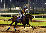 LOUISVILLE, KY --MAY 14: Lone Sailor gallops at Churchill Downs, Louisville, Kentucky with exercise rider Maurice Sanchez in preparation for the Preakness Stakes in Baltimore, Maryland.  (Photo by Mary M. Meek/Eclipse Sportswire/Getty Images)