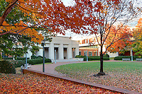A fall colored view of the University of Virginia School of Law in Charlottesville, VA.  Photo/Andrew Shurtleff