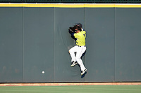 Left fielder Jay Jabs (7) of the Columbia Fireflies slams into the outfield wall but fails to catch a hit in a game against the Rome Braves on Sunday, August 20, 2017, at Spirit Communications Park in Columbia, South Carolina. Rome won, 11-6 in 16 innings. (Tom Priddy/Four Seam Images)