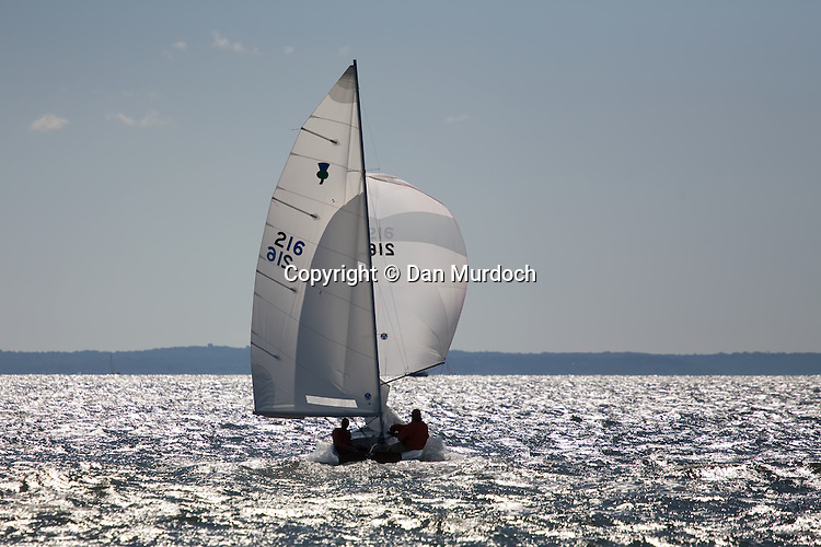 Thistle Sailboat racing into the sun