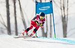 Alexis Guimond, PyeongChang 2018 - Para Alpine Skiing // Ski para-alpin.<br /> Alexis Guimond skis in the men's standing downhill // Alexis Guimond skis en descente debout masculin. 10/03/2018.