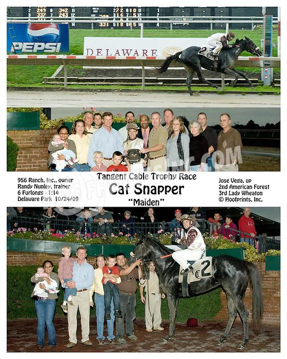 Cat Snapper winning at Delaware Park on 10/24/09