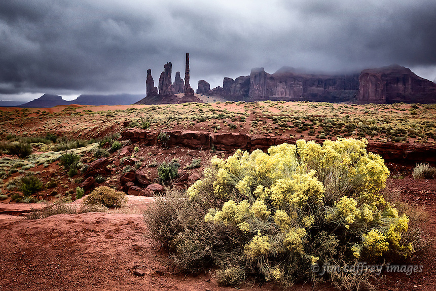 Chamisa and the sanstone spires known as the Totem Poles in monument Valley