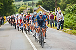Tim Declercq ((BEL) Deceuninck-Quick Step leads the peloton during Stage 4 of the 2021 Tour de France, running 150.4km from Redon to Fougeres, France. 29th June 2021.  <br /> Picture: A.S.O./Charly Lopez   Cyclefile<br /> <br /> All photos usage must carry mandatory copyright credit (© Cyclefile   A.S.O./Charly Lopez)