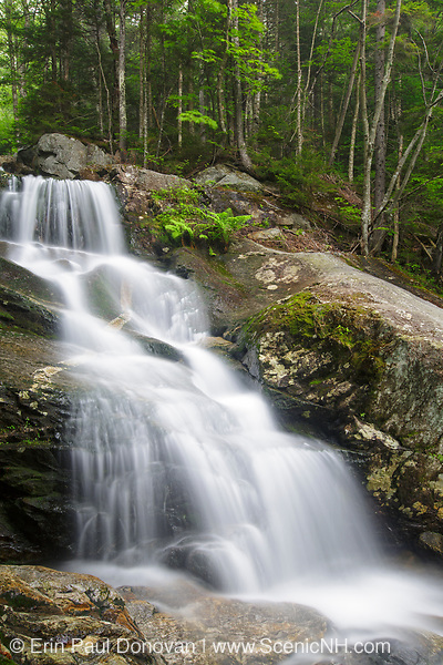 Beaver Brook Cascades on Beaver Brook in Kinsman Notch of the New Hampshire White Mountains during the spring months. The Appalachian Tail passes by these cascades.