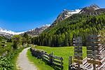 Italy, South Tyrol (Trentino - Alto Adige), Prettau (Predoi) - district Kasern (Casere), hiking trails at valley end of  Tauferer Ahrntal (Valli di Tures e Aurina), at background Venediger Group mountains | Italien, Suedtirol (Trentino - Alto Adige), Prettau - Weiler Kasern: Wanderwege am Ende des Ahrntals, Italiens noerdlichste Gemeinde im Naturpark Rieserferner-Ahrn, im Hintergrund die Berge der Grossvenedigergruppe