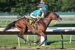 August 02 2015: American Pharoah, ridden by Victor Espinoza, wins the Haskell Invitational on Haskell Day at Monmouth Park in Oceanport, NJ. Sophie Shore/ESW/CSM