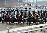 09 October 24: Sarto (no. 7) is ridden to victory in the Find Handicap by Joseph Rocco Jr. on Frank J. DeFrancis Memorial Dash Stakes Day at Laurel Park in Laurel, Maryland.
