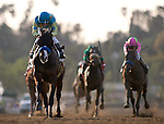 Bodemeister, with Rafael Bejarano aboard finishes second in the 2012 San Felipe Stakes at Santa Anita Park in Arcadia California on March 10, 2012.