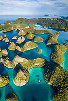 limestone islands, surrounded by diverse coral reefs, Raja Ampat Islands, West Papua, Indonesia, Pacific Ocean