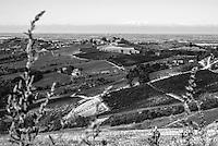 Campi presso Oliva Gessi, paese in provincia di Pavia, con la pianura padana e le Alpi sullo sfondo --- Fields near Oliva Gessi, small village in the province of Pavia, with the padan plain and the Alps on the background