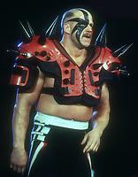 Hawk1993 Photo By John Barrett/PHOTOlink