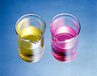 COMMON ION EFFECT: ACETIC ACID & SODIUM ACETATE<br /> Adding Sodium Acetate To Acetic Acid Solution<br /> RED -Acetic acid (aq); pH=2.89. YELLOW -Added sodium acetate shifts equilibrium to left decreasing number of H3O+ ions and increasing pH to 4.74. Acetate(CH3CO2-) is the common ion. CH3C00H(aq) + H2O(l)  H3O+(aq) + CH3CO2-(aq) (methyl orange)