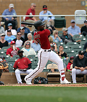 Starling Marte - Arizona Diamondbacks 2020 spring training (Bill Mitchell)