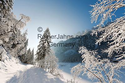 Austria, Upper Austria, Salzkammergut, Gosau: winter scenery at Lower Gosau Lake with Dachstein mountains | Oesterreich, Oberoesterreich, Salzkammergut, Gosau: Winterlandschaft am vorderen Gosausee mit Dachsteingruppe
