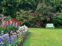 Bench and gardens at Schreiner's  iris Gardens. Brooks, Oregon